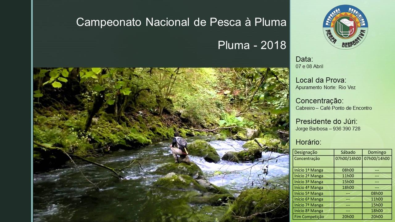 07_08_Camp. Pluma Norte