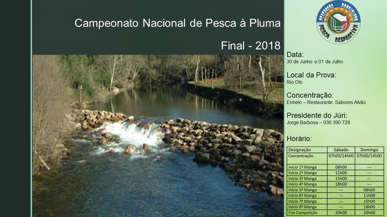 30_01 Pluma